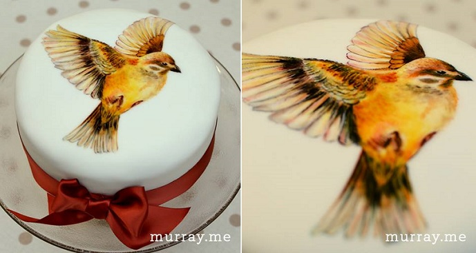 hand painted cake bird design by Murray Me Cakes, Brighton UK