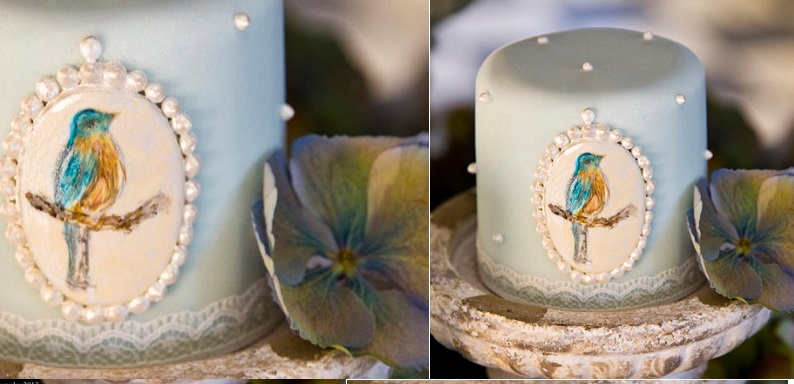 hand painted cake with bird design by Curtis and Co. Cakes, Nikki Kirk Photography
