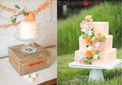 peach wedding cakes via awedding cakeblog.com left and by Bakermoma right, Sylvia Ox Photography