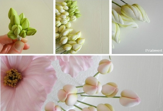 Cake Decorating Sugar Flowers How To Make
