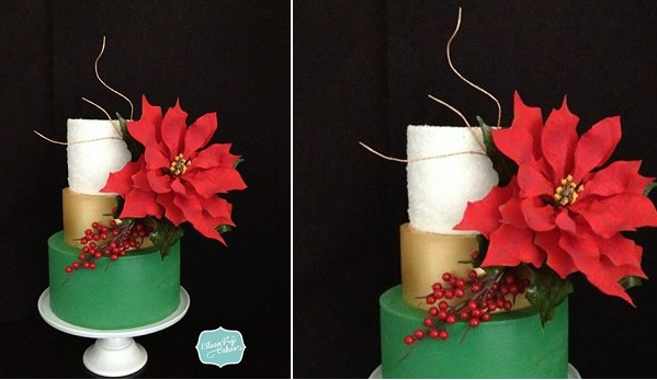ponsettia christmas cake by Eileen Fry Cakes
