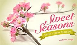 gumpaste cherry blossom tutorial with Nicholas Lodge on Craftsy