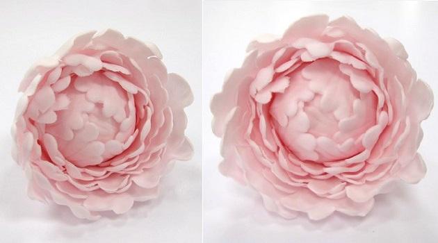 Gumpaste Peony Tutorial (Sugar Flowers for Beginner's ...