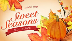 fall foliage tutorial with nicholas lodge