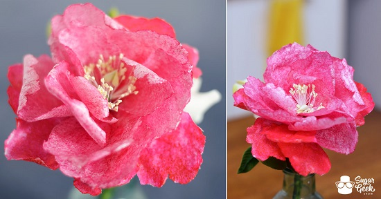 wafer-paper-peony-tutorial-sugar-geek-show