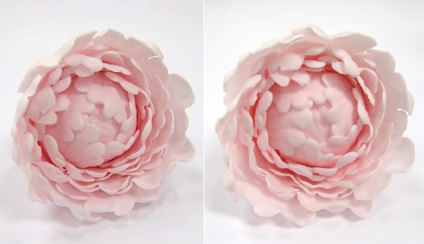 Gumpaste Peony Tutorial on Cake Geek Magazine, Sugar Flowers for Beginners Series, Part 1