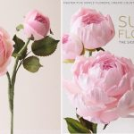 Gumpaste English Rose Tutorial by Naomi Yamamoto extracted from her book: Sugar Flowers - The Signature Collection