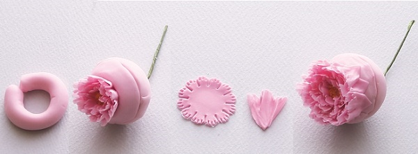 Gumpaste English Rose Tutorial from Sugar Flowers by Naomi Yamamoto, B Dutton Publishing, Takeharu Hioki Photography, 3