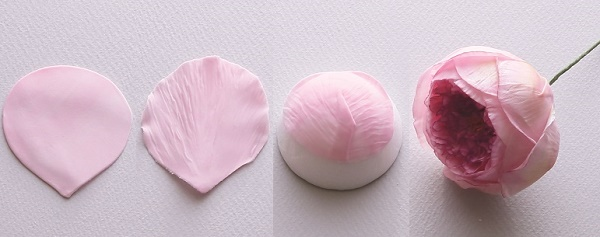 Gumpaste English Rose Tutorial from Sugar Flowers by Naomi Yamamoto, B Dutton Publishing, Takeharu Hioki Photography, 6