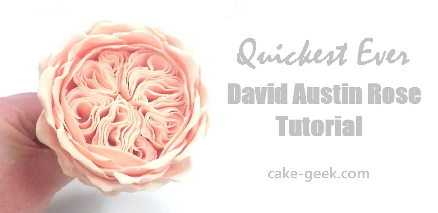 Gumpaste-David-Austin-rose-tutorial-on-Cake-Geek.com-Quickest-Ever-David-Austin-Rose-Tutorial