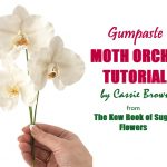 Gumpaste Moth Orchid Tutorial on Cake-Geek.com from The Kew Book of Sugar Flowers by Cassie Brown - headline pic