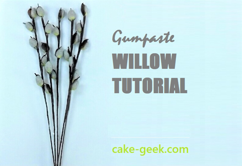 Gumpaste Willow Tutorial on Cake-Geek.com