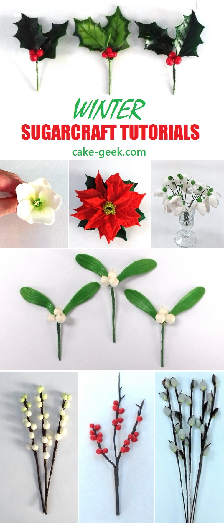 Winter Sugarcraft Tutorials on Cake Geek.com