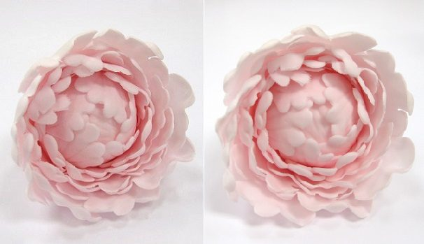 Gumpaste Peony Tutoral on Cake Geek Magazine, Sugar Flowers for Beginners Series, Part 1